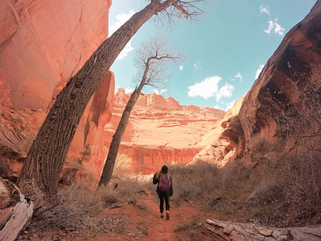 Glad the sun showed itself for our time spent in Neon Canyon