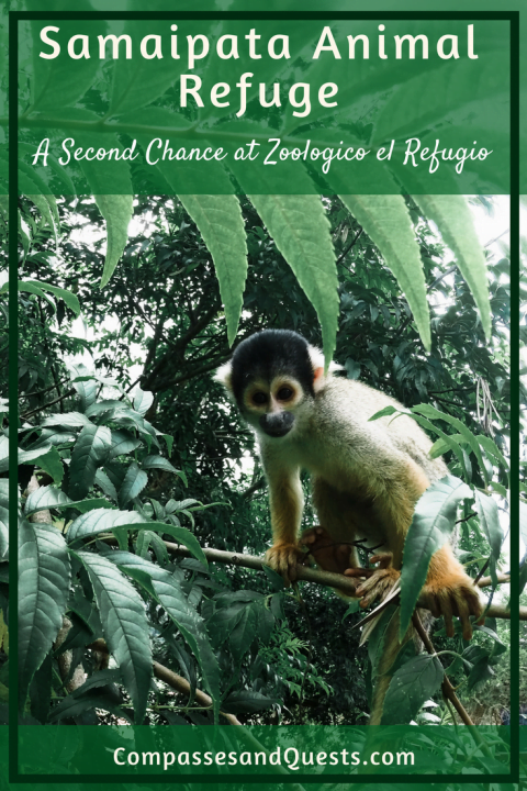 Samaipata Animal Refuge