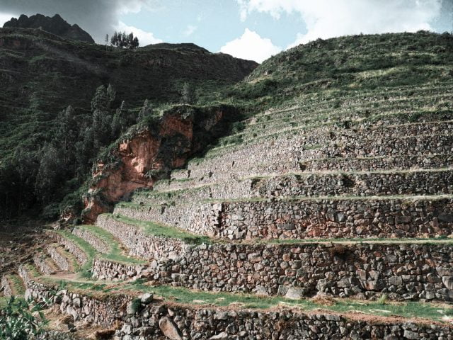 The many long terraces were very impressive