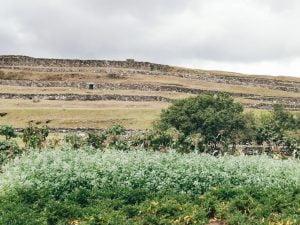 Pumapungo Museum: A Photo Gallery