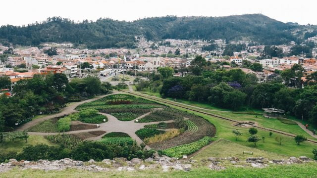 Looking down at the gardens that showcase various Ecuadorian plants