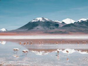 Salar de Uyuni: Touring Bolivia's Deserts