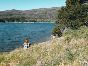 Chambers Lake Camping: Summer Up the Poudre Canyon