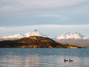 Read more about the article Things to Do in Ushuaia, Argentina