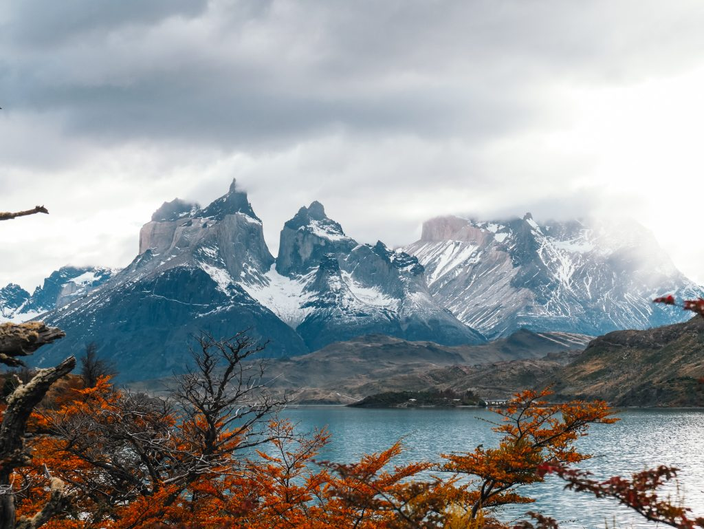 Fall foliage in Torres del Paine